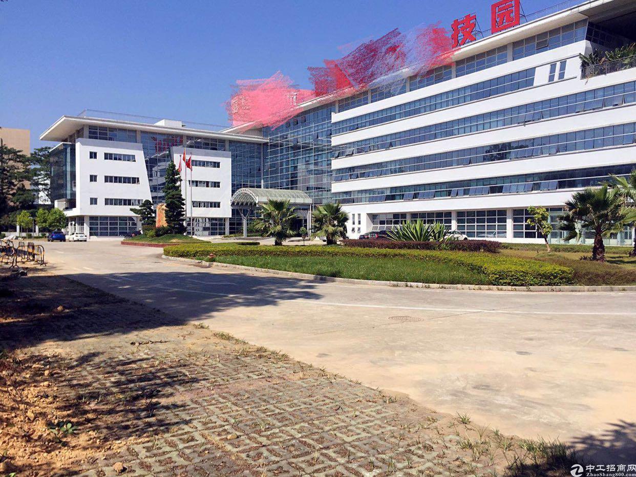 福永凤凰带红本高新产业园39000平方隆重招商大小分租