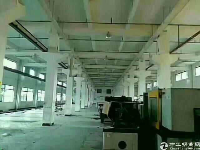 独院厂房分租-图4