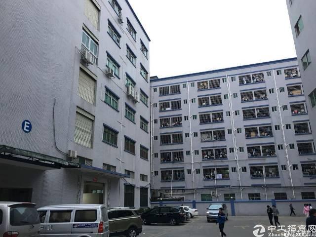 坂田上雪科技园带装修整层1750平方低价出租