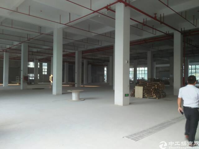 观澜梅关口原房东商业楼37000平方两栋低价55元出租