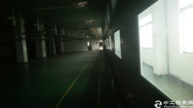 福永带红本独院6000平米厂房招租-图5