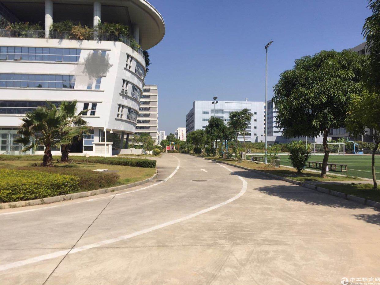 福永凤凰带红本高新产业园39000平方隆重招商大小分租-图4