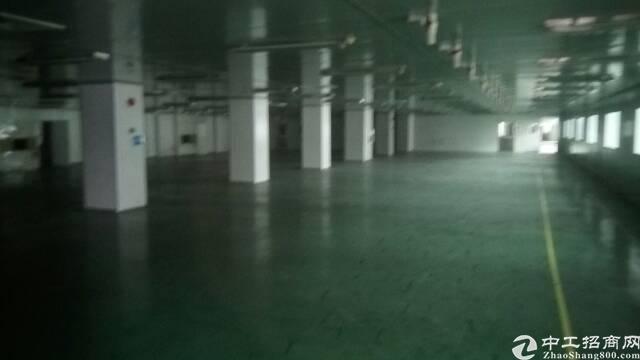 福永带红本独院6000平米厂房招租-图3
