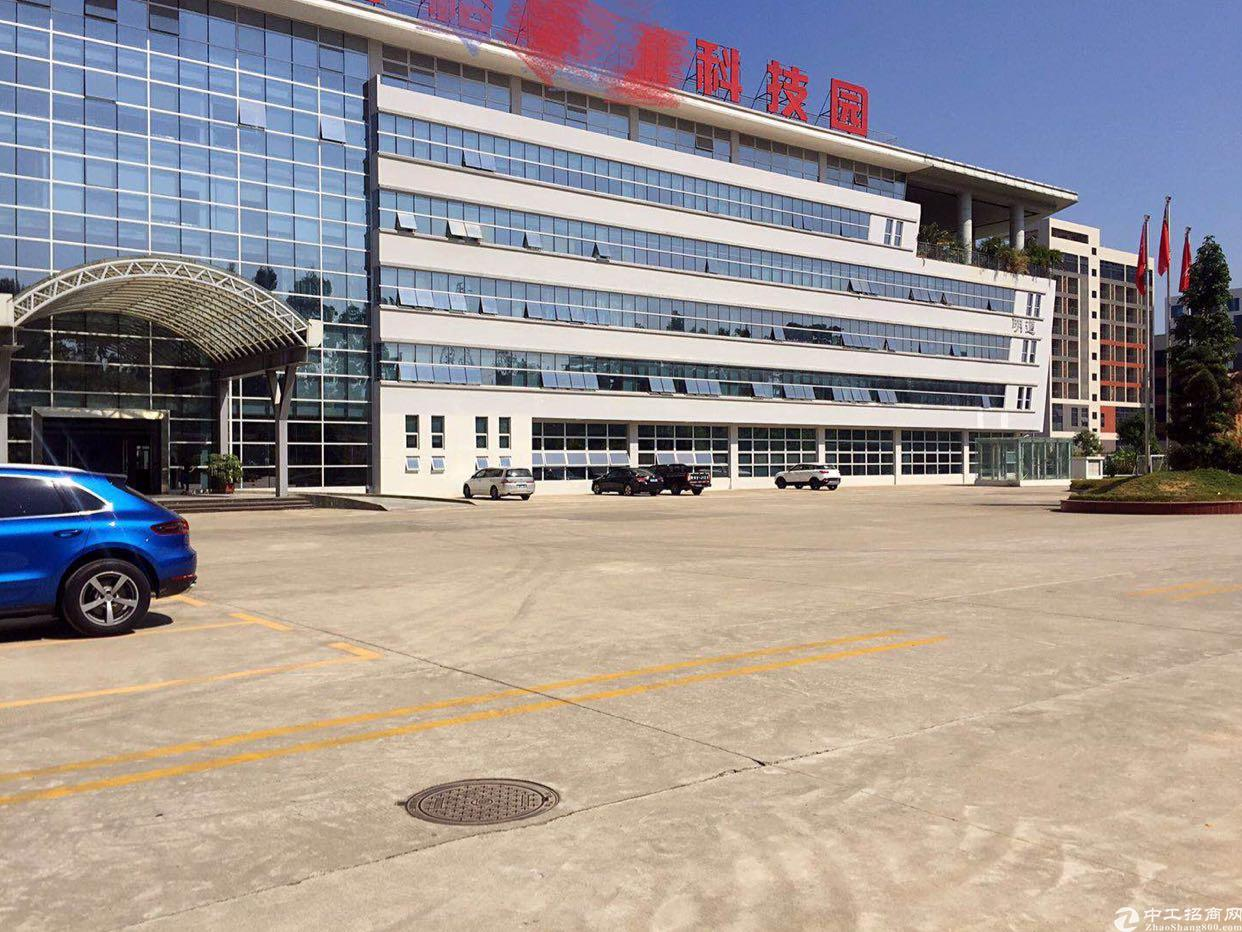 福永凤凰带红本高新产业园39000平方隆重招商大小分租-图6