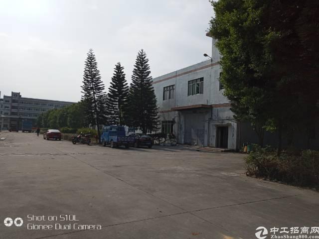 清溪镇新岀花园式原房东独门独院标准厂房