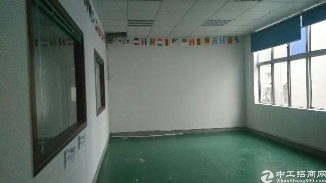 横岗 六约 写字楼出租 电商仓库 320平
