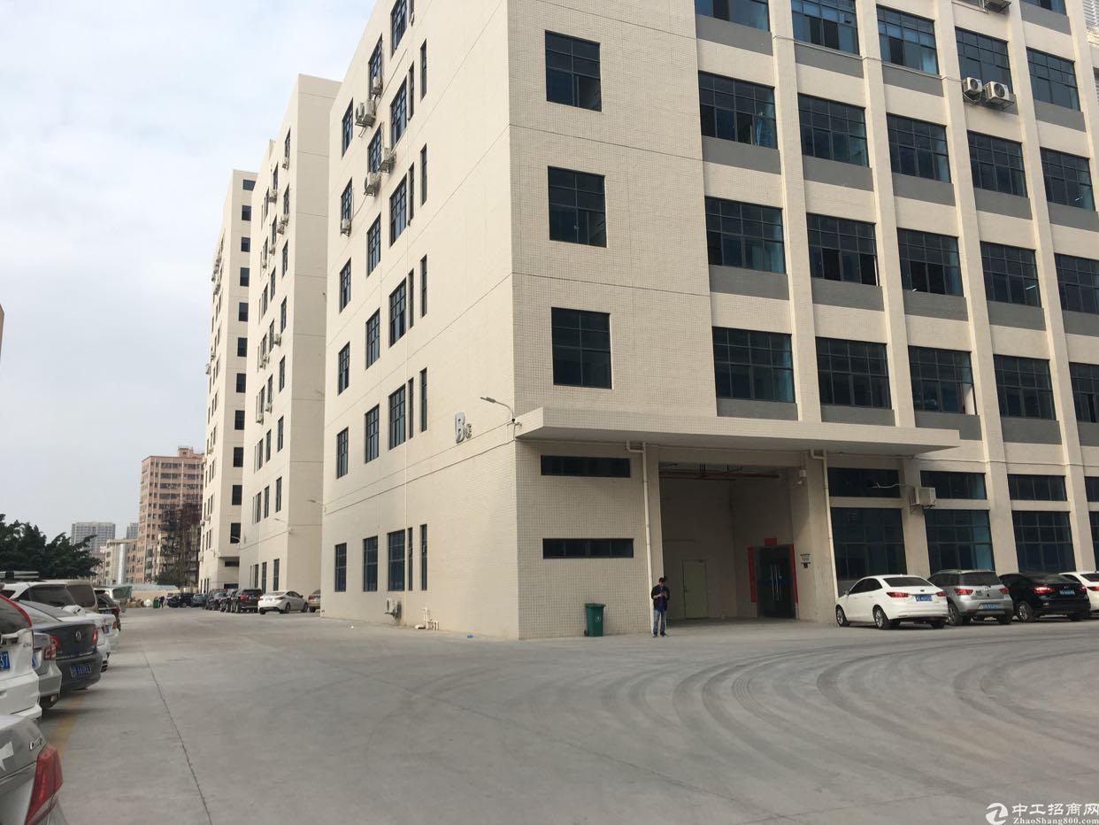 深圳市宝安区石岩塘头工业园3楼2500平米带装修电子厂房出租