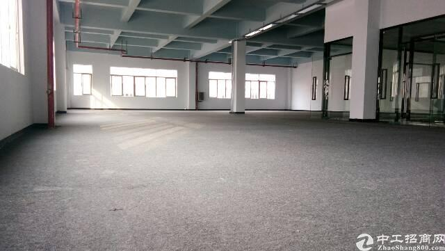 龙华大浪主干道边厂房改写字楼,大小面积匀有,可自由组合