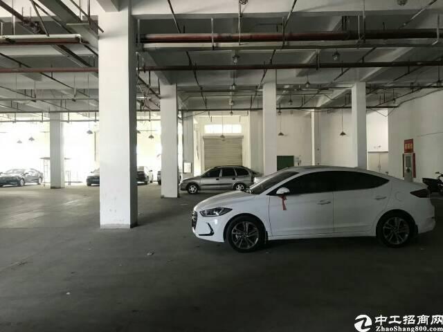 布吉上李朗厂房出租,一楼面积3100平米,1000平米起租