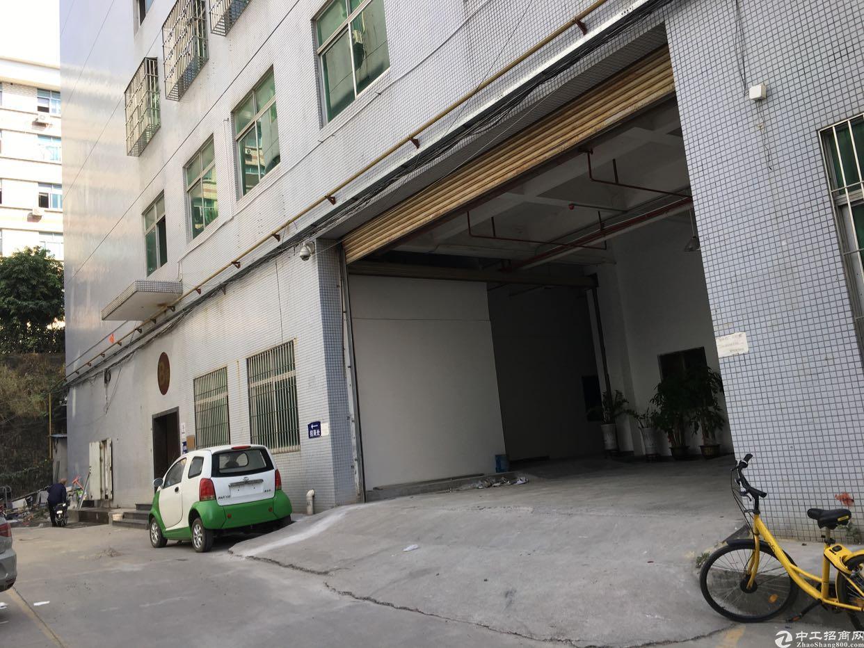 坂田地铁口500米处一楼1800平方大小分租低价出租