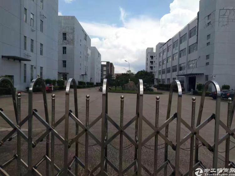 (出租)福永红本原房东独院厂房招租,3000平米-图2