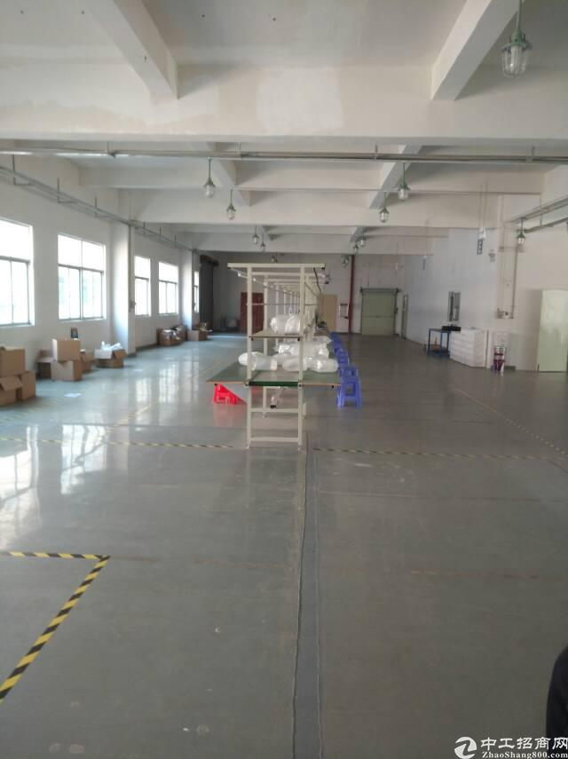 沙头实业客转租三楼2000全新装修厂房