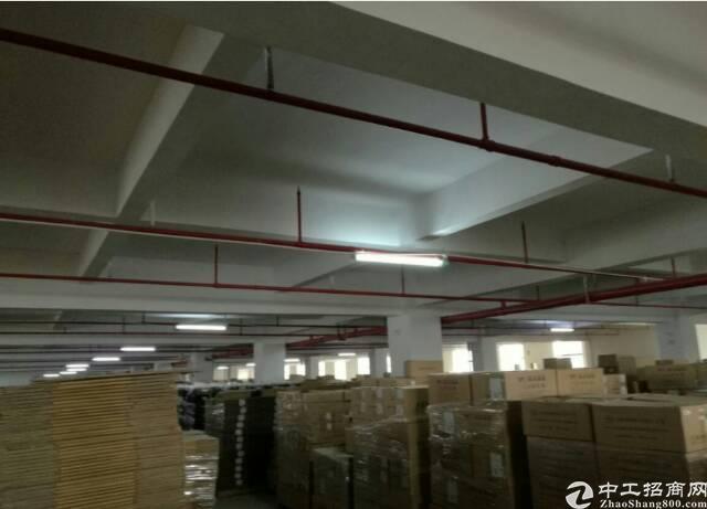 横沥山厦独院带装修2000平米厂房招租