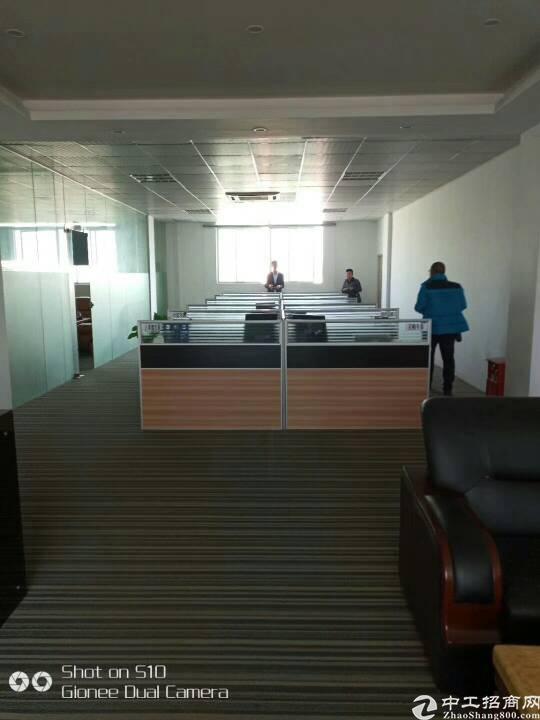 坪山东纵路面带地坪漆和精装办公厂房1200平-图5