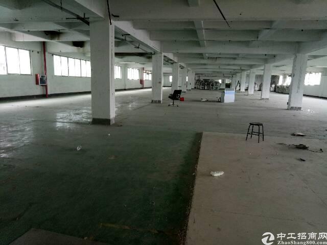 福永怀德新出3楼整层1800平方原房东厂房出租-图5
