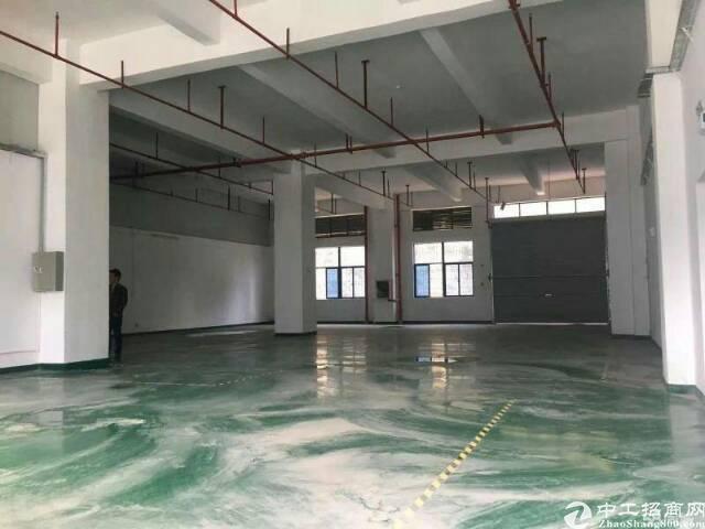 布吉丹竹头新出一楼仓库130平方-图3
