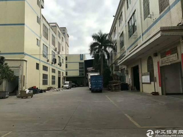 观澜松元环观中路边1楼600平方标准厂房仅租21