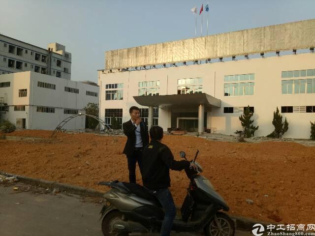 福永凤凰山附近独院5900平方带红本厂房出租-图3