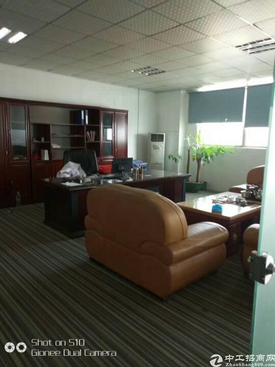 坪山东纵路面带地坪漆和精装办公厂房1200平-图3
