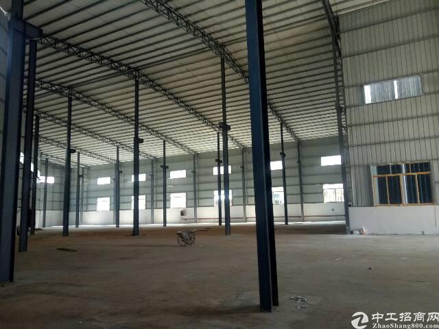 园洲新出钢结构厂房