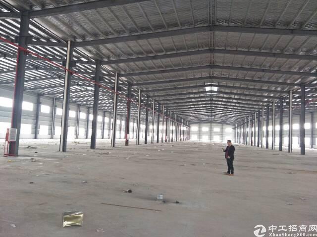 惠州仲恺高新区新出原房东十米高钢构16000平方出租