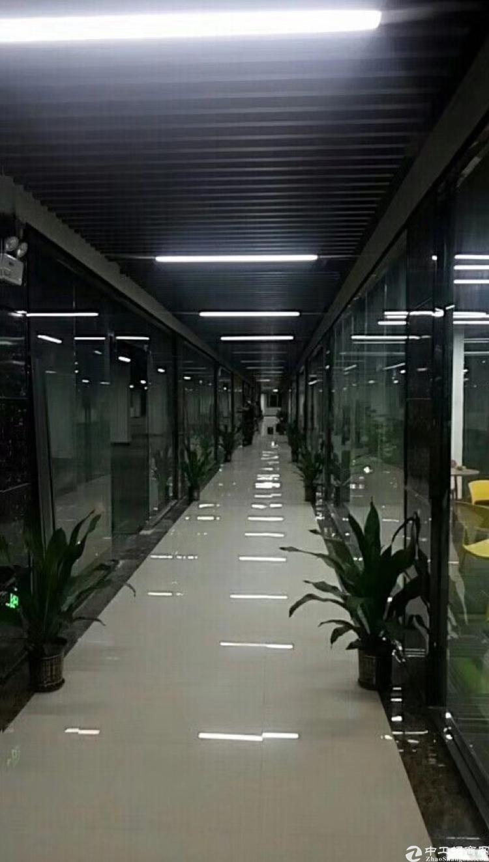 龙胜地铁口精装修电商创客园大小户型100平~1800平