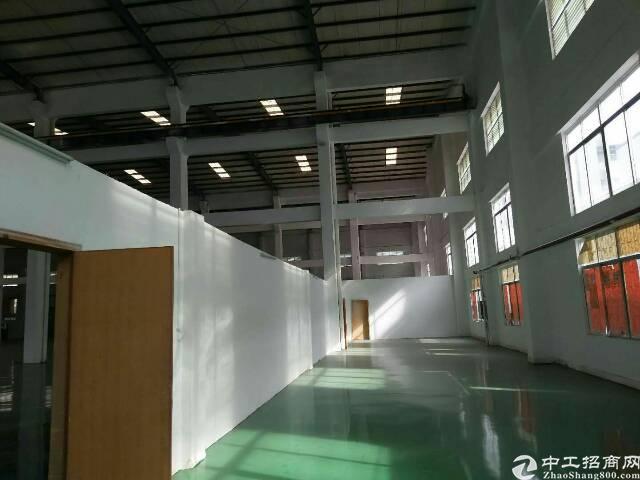 全新钢结构厂房低价抛租-图3