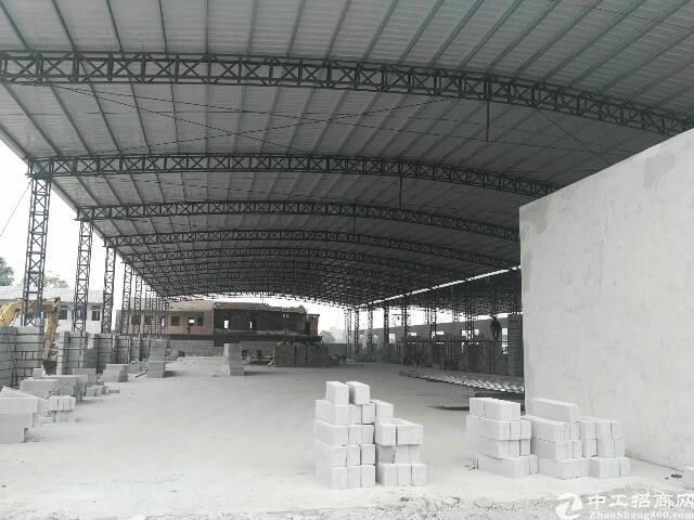高埗镇新建独门独院单一层钢构厂房出租