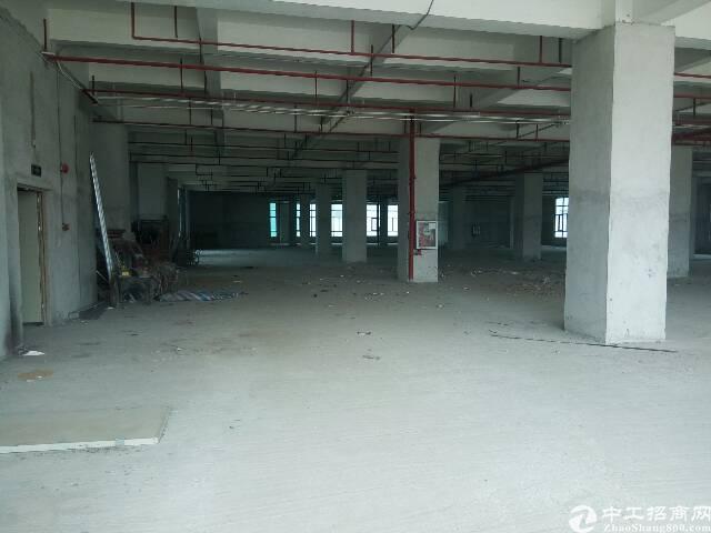 平湖华南城边上楼上带消防喷淋厂房办公楼出租-图2