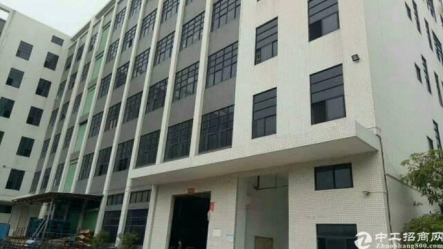 公明新出一楼6.5米高带牛角厂房3800平方