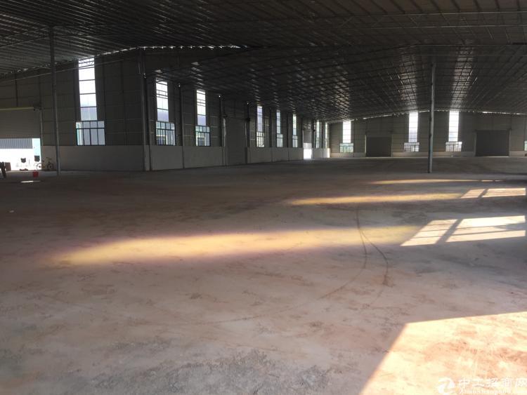 新塘标准钢构26000平厂房出租-图2