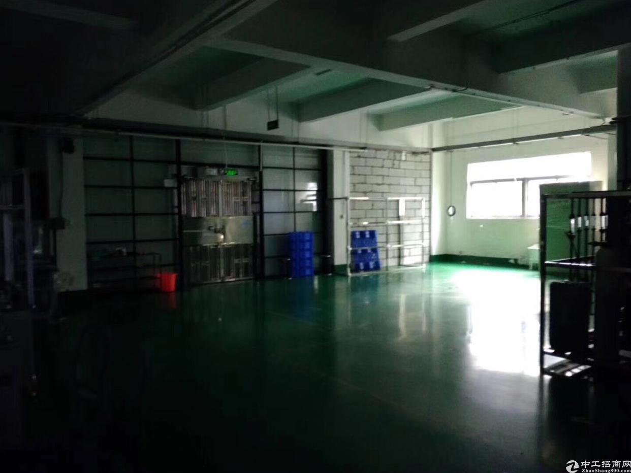坂田上雪科技园带精装修厂房-图2