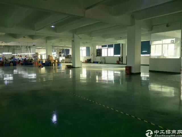 公明新出楼上一整层900平方带装修厂房-图3