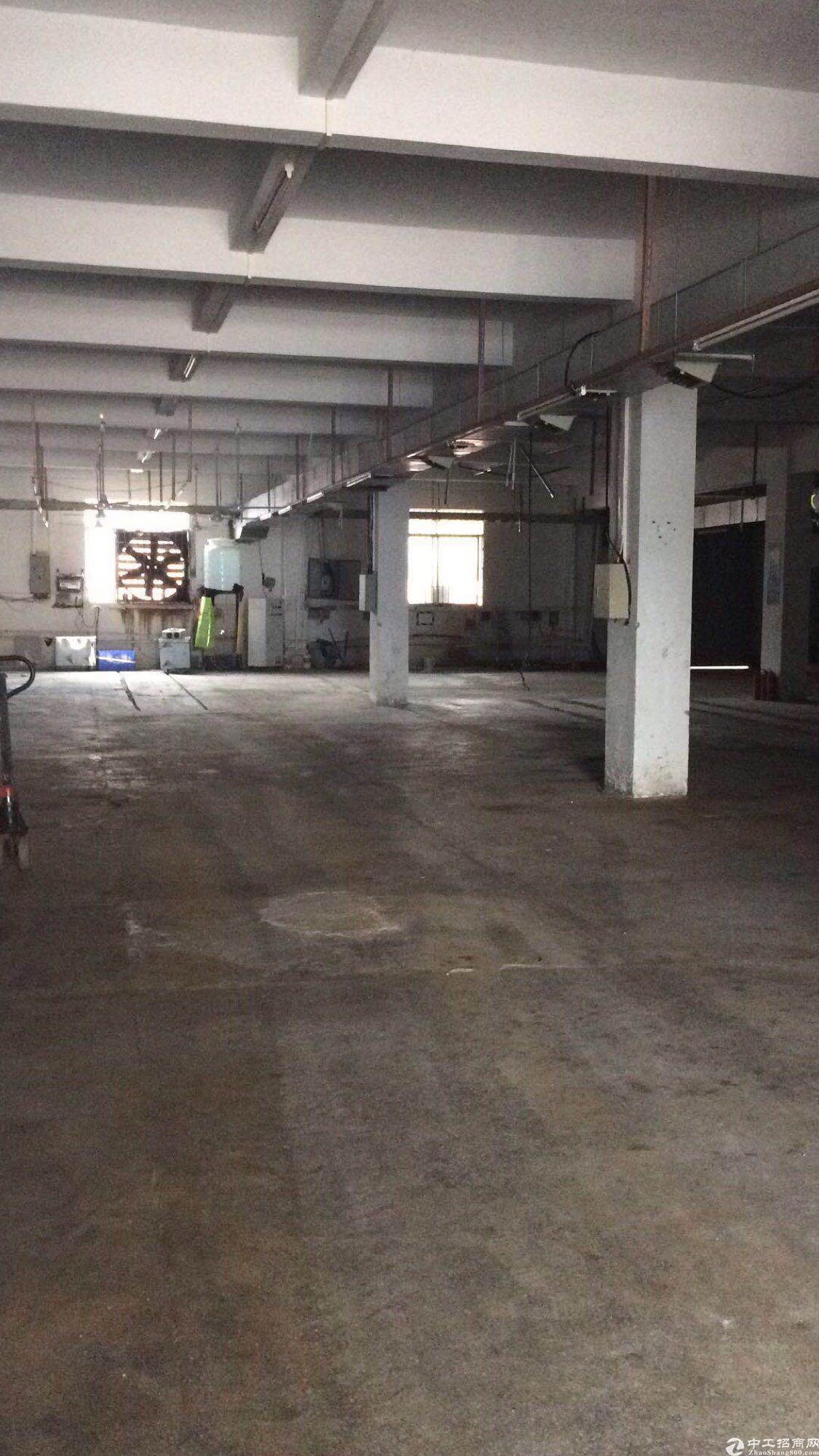 黄江星光村工业园内分租标准一楼现成水电装修,拎包入住即可生产