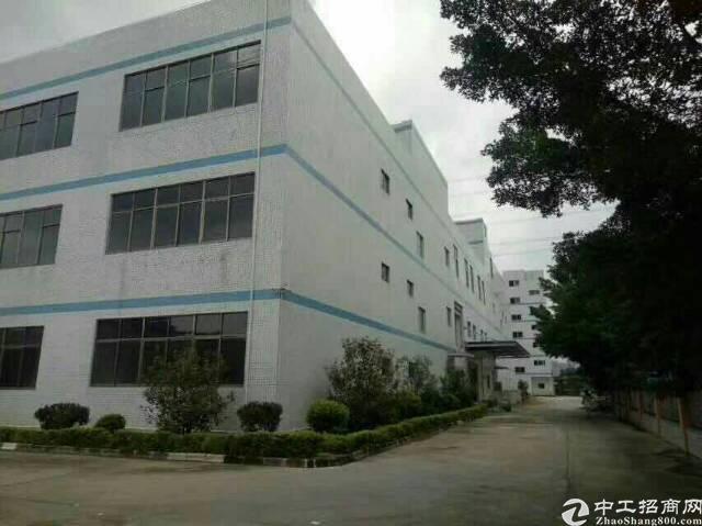 福永凤凰3000平米产业园整栋厂房出租