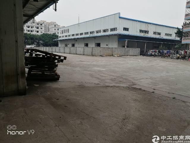 福永107国道边新出钢结构物流厂房