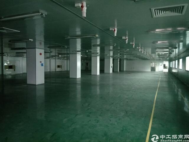 长安高速出口新出原房东独门独院厂房6000平米。