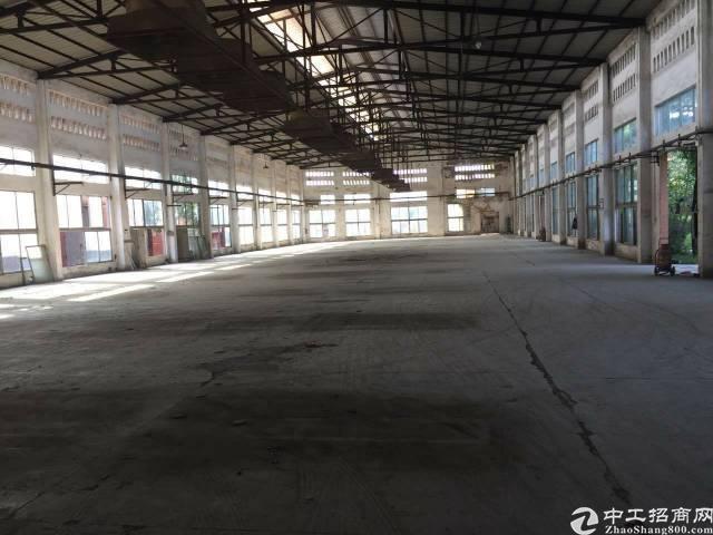 福永107边上20米钢构厂房3500平方,高8米-图2
