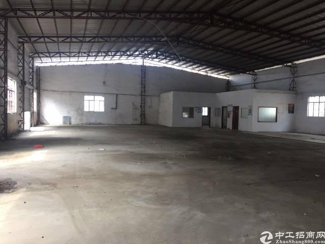 福永107边上20米钢构厂房3500平方,高8米-图4