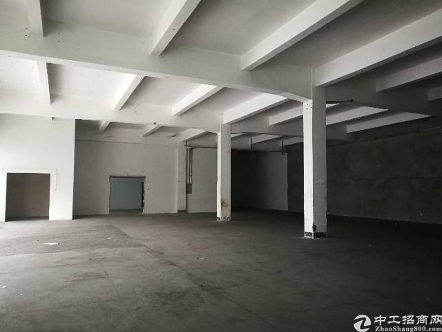福永凤凰独栋厂房3层5200平方出租-图4