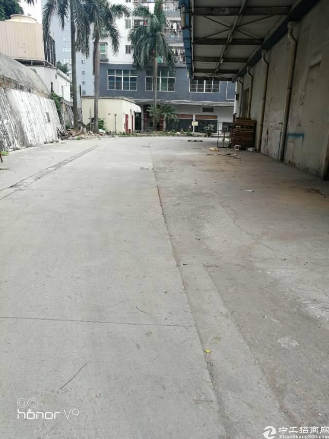 福永107国道边新出钢结构物流厂房-图3