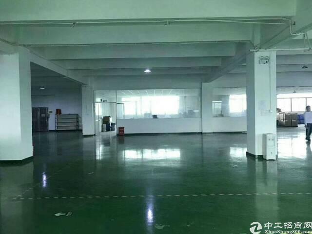 公明新出楼上一整层900平方带装修厂房-图2