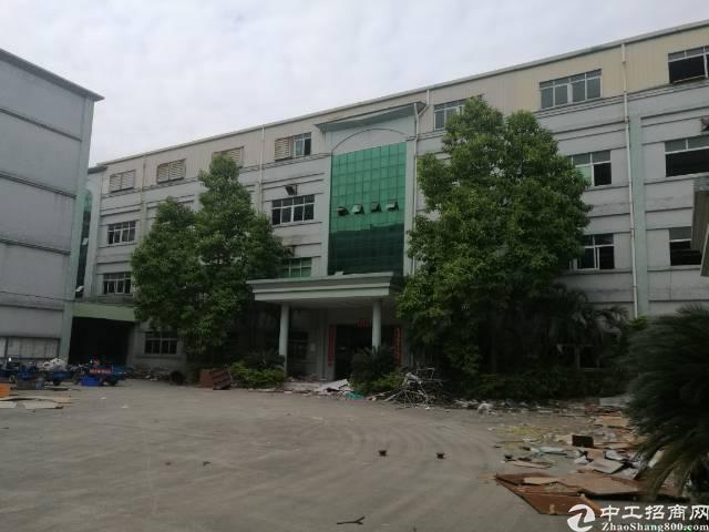 石排镇标准一楼5.5米高2000方出租