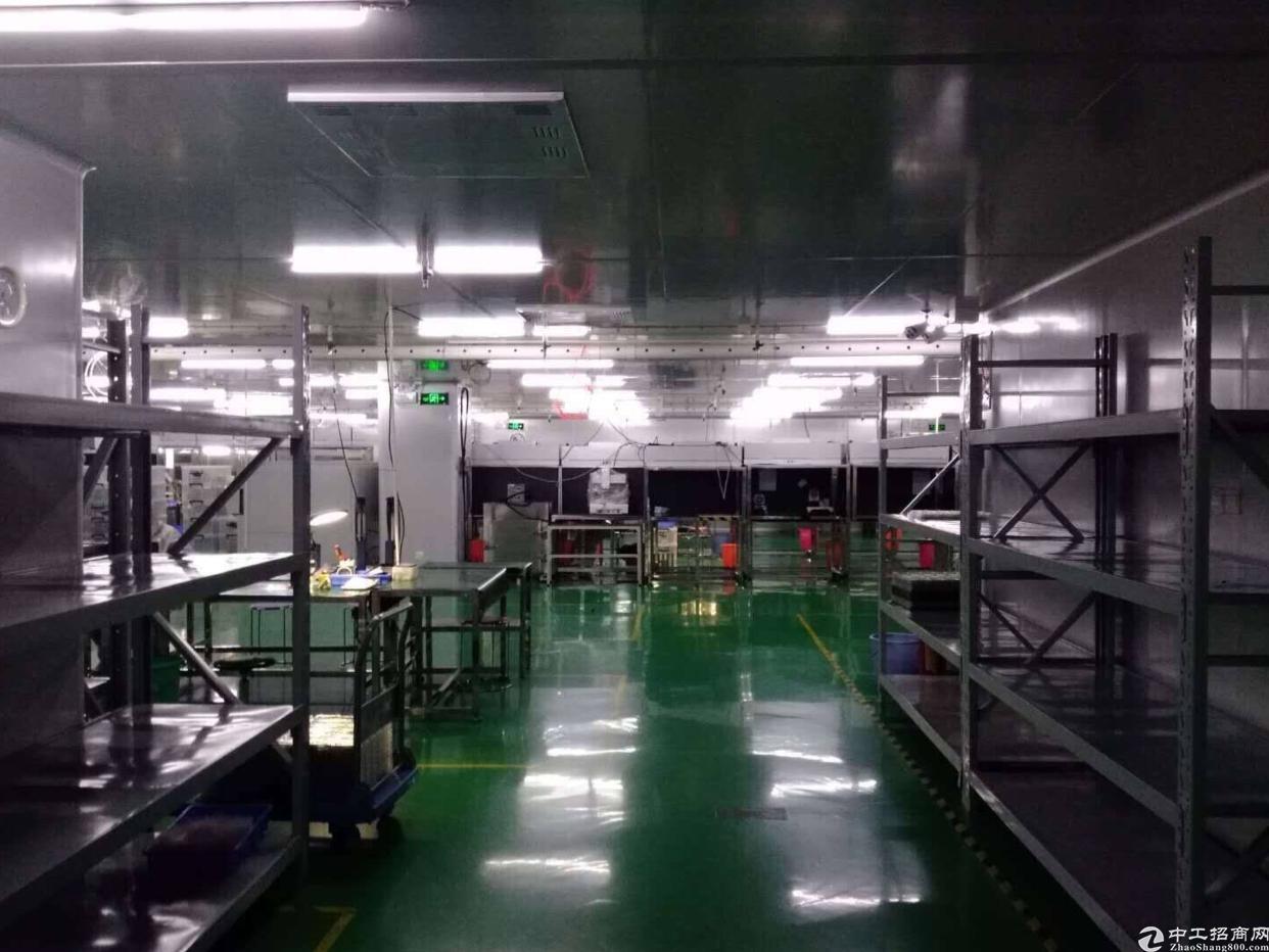 坂田上雪科技园带精装修厂房