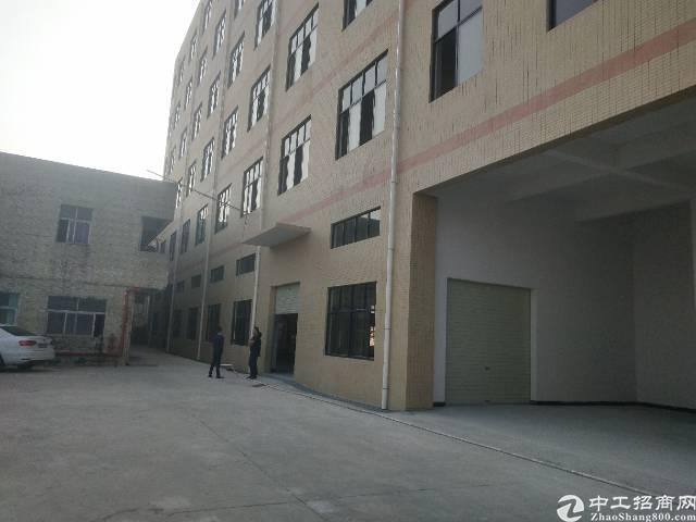 大岭山镇颜屋新出标准一楼7米高1500平米