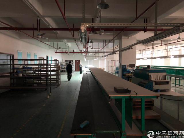 福永新河独院整层2400平方厂房出租-图5