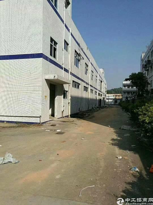 横沥三江工业区新出1500平方一楼
