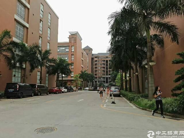 龙华高新科技园10000平米厂房出租有红本