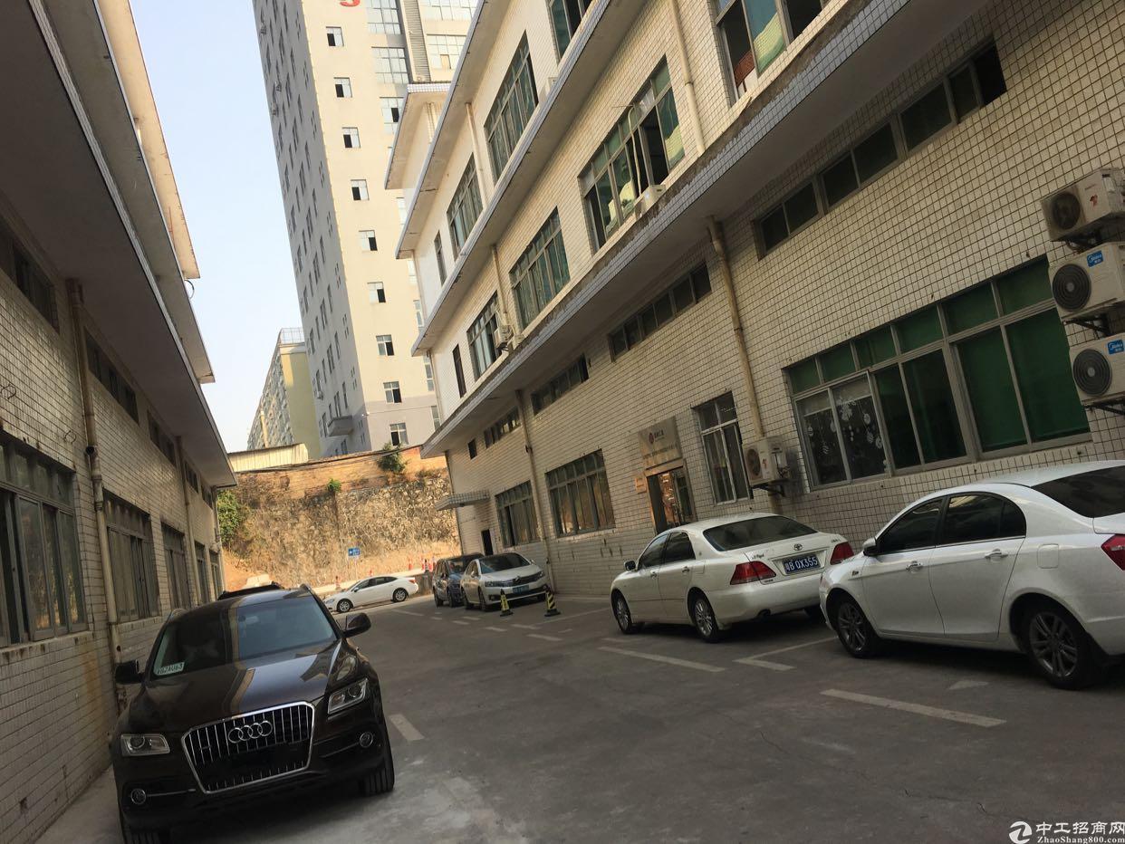 油松天汇大厦附近新出一楼450平,带现成装修,实用率高