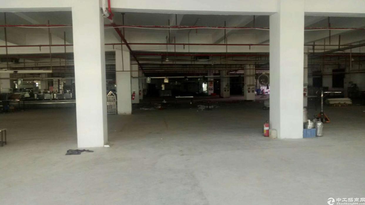 大岭山镇标准独院厂房2层6000平方出租-图2